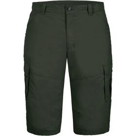 Icepeak Ep Ardoch Shorts Men, Oliva